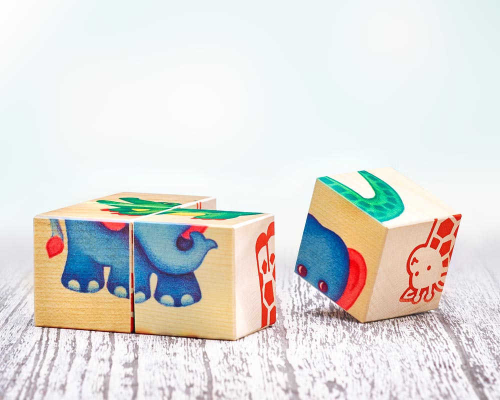 bois livre images cubes enfants de zoo enfants